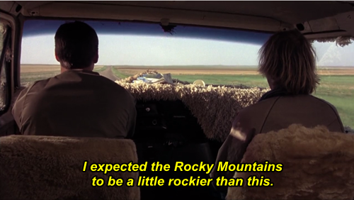 13 Dumb and Dumber quotes