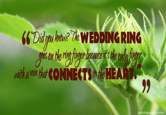 funny-wedding-quotes-and-funny-marriage-quotes-30