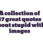 A collection of 37 great quotes about stupid with images