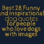 Best 28 Funny and inspirational dog quotes for people who love dogs with images